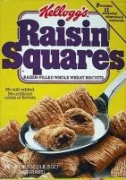 Raisin_Squares-3